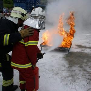 Service d'Incendie et de Secours